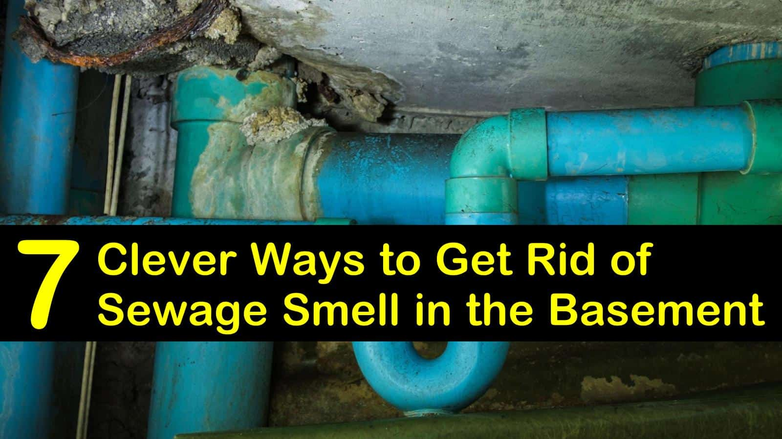 get rid of sewage smell in the basement