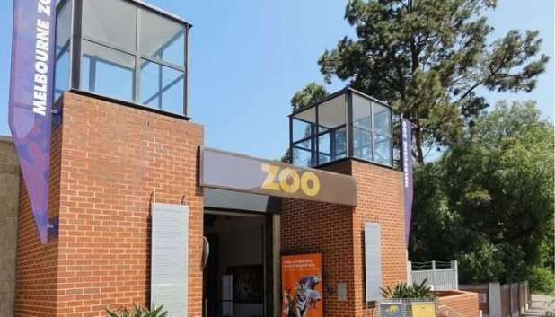 The oldest zoo in the country