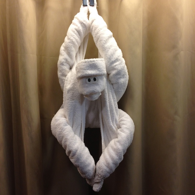 Towel Monkey on Holland America Nieuw Amsterdam