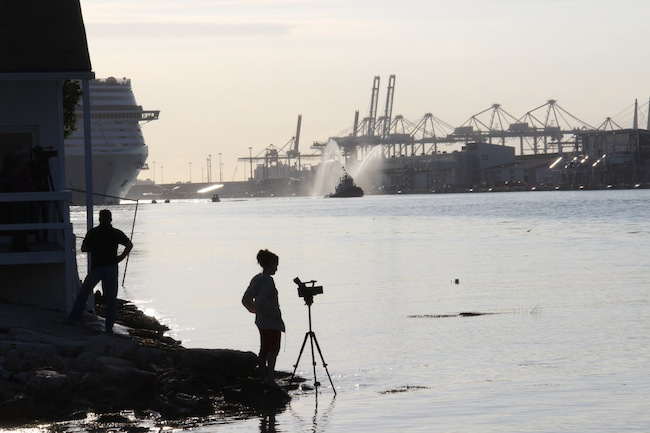 MSC Divina emerges out of the bright morning sun into the Port of Miami
