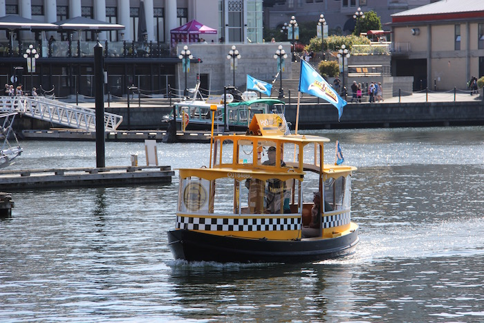 Water Taxi Victoria Harbour