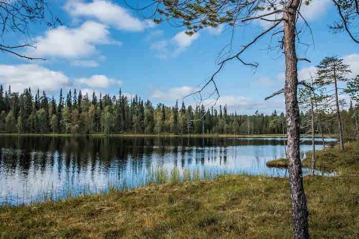 Oulanka National Park Ruka Kuusamo Finland