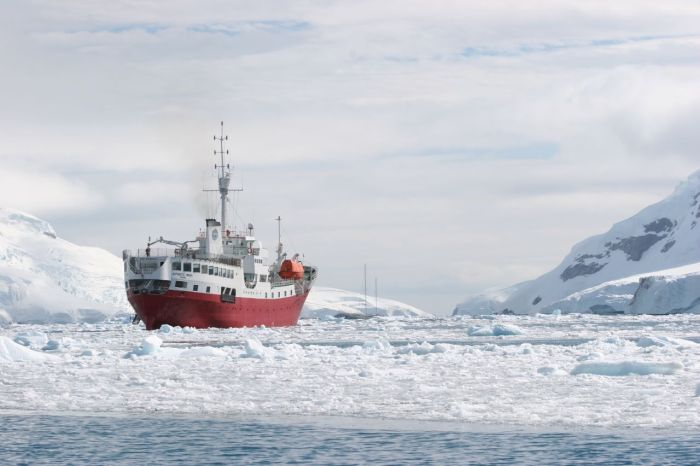 Antarctica Tips For Travellers Things You Need To Know Tips - 12 things to see and do in antarctica