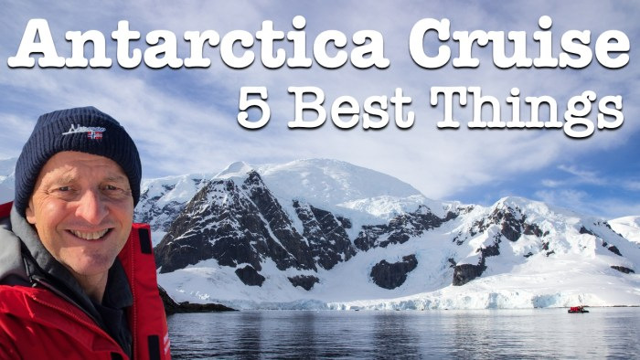 Antarctica Cruise Best Things To See