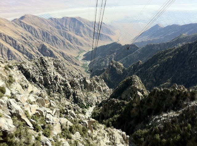 Palm Springs Aerial Tramway and Jacinto State Park: not to be missed!