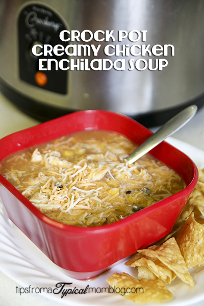 Easy Crock Pot Creamy Chicken Enchilada Soup