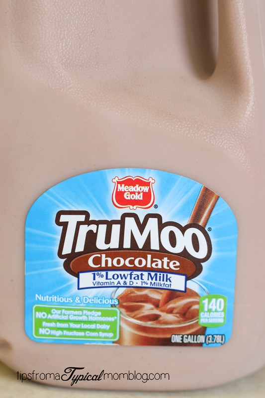 Hot Chocolate Mint Malt with TruMoo
