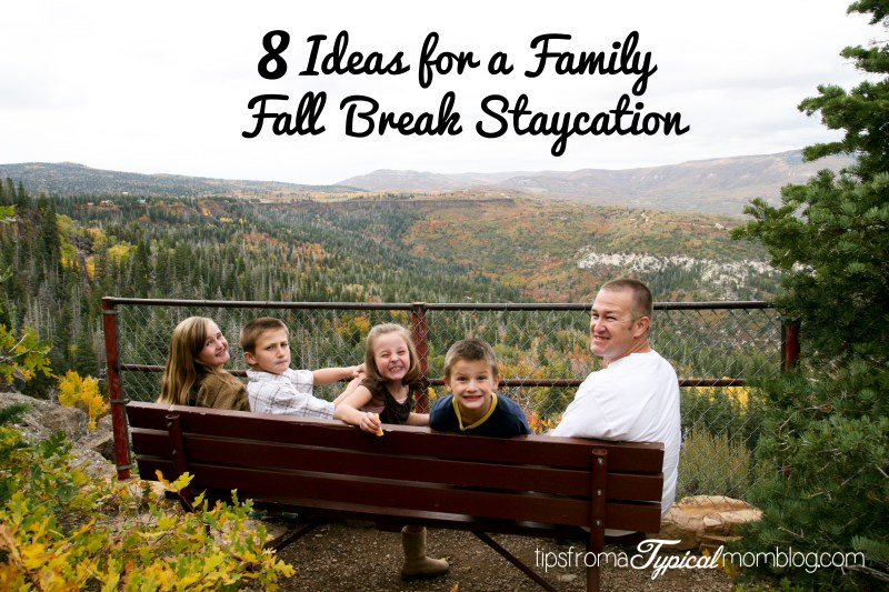 8 Ideas for a Family Fall Break Staycation