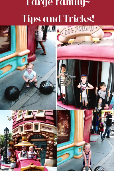 Visiting Disneyland with a Large Family- Tips and Tricks