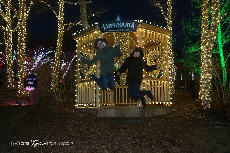 Luminaria at Thanksgiving Point- A Review