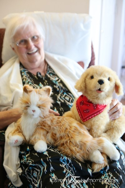 Companion Pets for Your Elderly Loved Ones