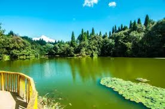 Best Place to Travel in Illam