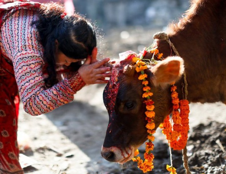 Interesting Myths You Need to Know About Tihar| 5 Days Festival