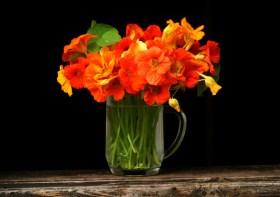 Tips Mengawetkan Bunga Potong