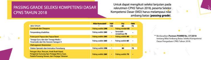 Berapa Passing Grade Nilai Ambang Batas Kelulusan CPNS 2018, Passing grade CPNS 2018