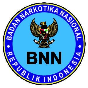 Pengumuman Hasil Tes CAT SKD CPNS BNN 2018 Seleksi Kompentensi Dasar.