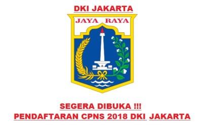 Petunjuk Cara Pendaftaran CPNS Provinsi DKI Jakarta 2018 SMA D3 S1, Bagaimana Mekanisme dan Alur Cara Pendaftaran CPNS Provinsi DKI Jakarta 2018.