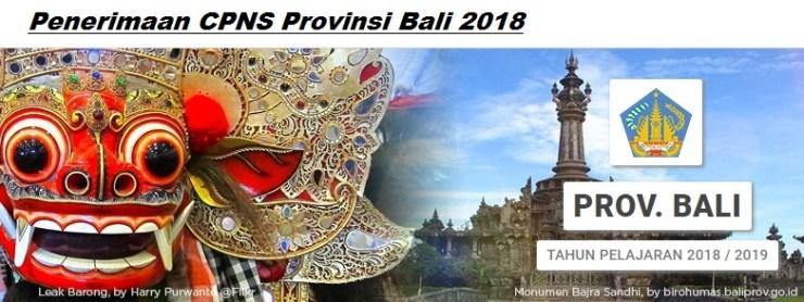 Petunjuk Cara Pendaftaran CPNS Provinsi Bali 2018 SMA D3 S1, Bagaimana Mekanisme dan Alur Cara Pendaftaran CPNS Provinsi Bali 2018.