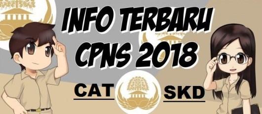 Pengumuman Hasil Tes CAT SKD CPNS Kabupaten Grobogan Purwodadi 2018 Seleksi Kompentensi Dasar.