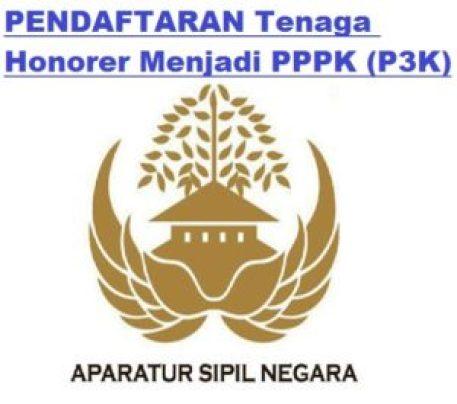 Jadwal Syarat dan Cara Pendaftaran PPPK P3K KAB BREBES 2019 Pengangkatan Honorer Menjadi Pegawai Kontrak