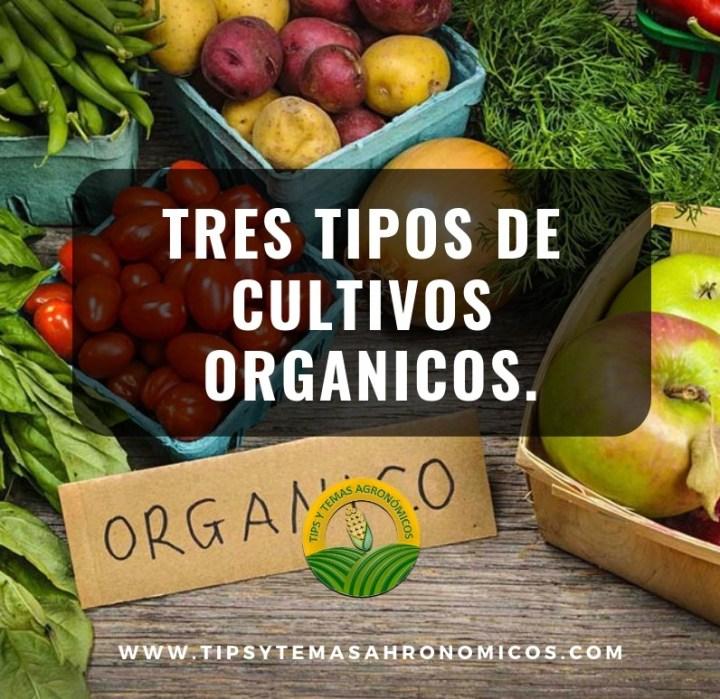 tres tipos de cultivos orgánicos .