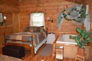 bedside jacuzzi for a smoky mountain honeymoon