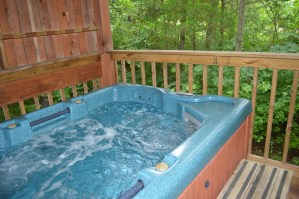 private, secluded cabin with hot tub