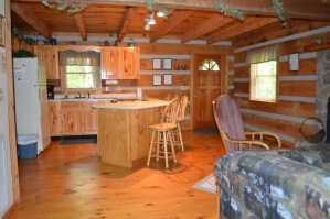 cheap rates on townsend log cabin rental