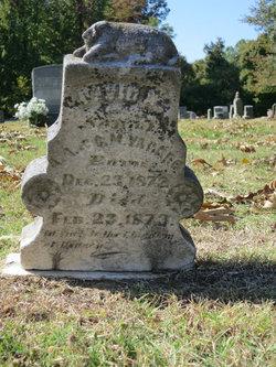David Yarbro buried in Indian Creek Cemetery Brighton TN