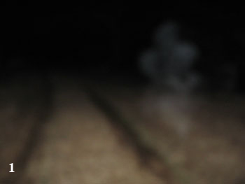 A white mist that appeared in the upper left corner of the picture. This image was not seen at the time the picture was taken, and is facing the gravestones that are near the old tree in the back of the cemetery.