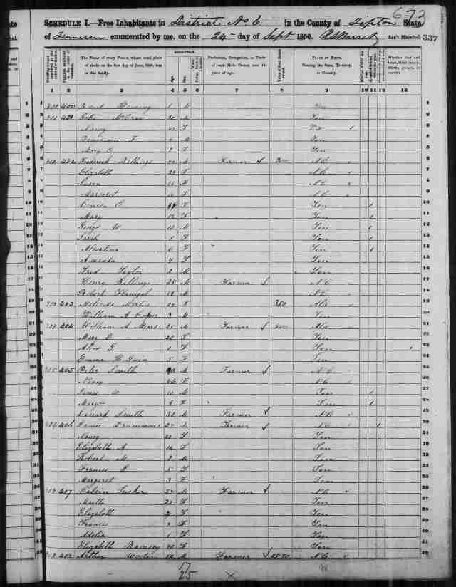 Image 3 1850 Census District 6 Tipton County Tennessee