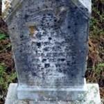 Earlie McClerkin, 4 years old, Dau of J. K. and B. J. McClerkin, Died May 5, 1877, Aged 4 yrs & 2 days.