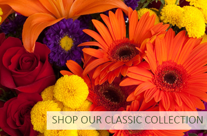 Shop Our Classic Collection
