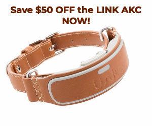 Link AKC Smart Collar Discount