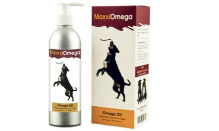 Maxxidog Omega Oil – Reviews of Omega Oil Supplement for Dogs
