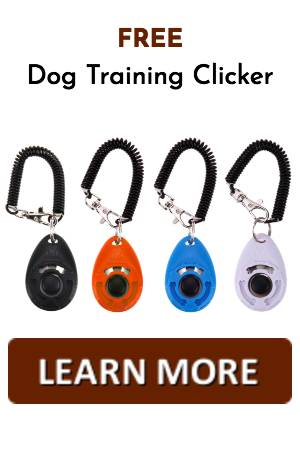 clicker training mirroring trick