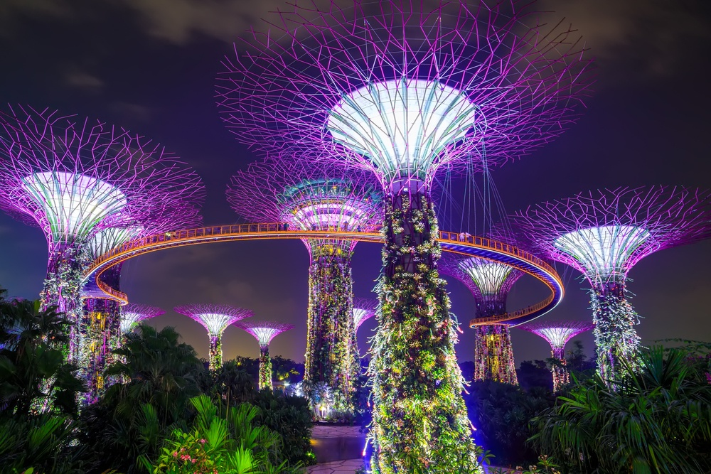 Supertree Grove lit up at night, powered by sustainable energy from solar power.