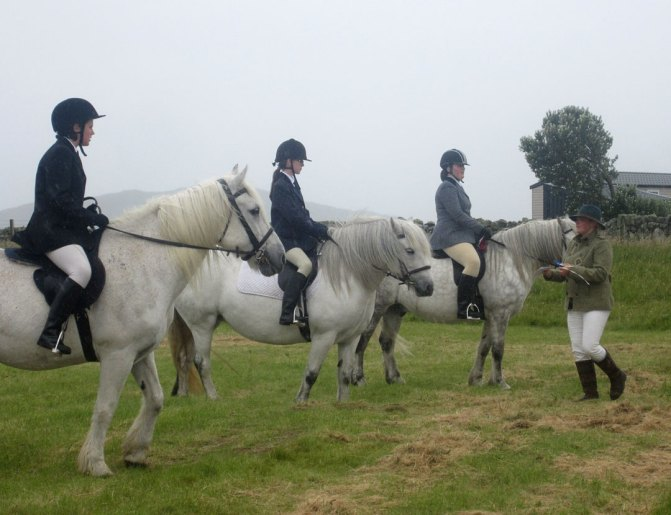 Pony Class at Tiree Show
