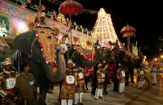 Holy Tirumala Temple Elephants Saluting Their Holy Lord
