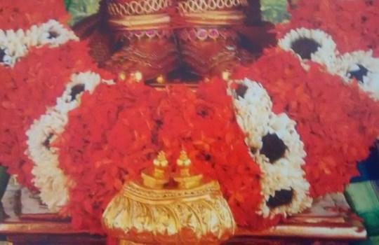 The Holy Lotus Feet Of Lord Sri Venkateswara
