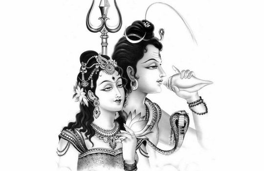 Lord Siva And Parvathi
