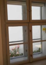 Fenster43