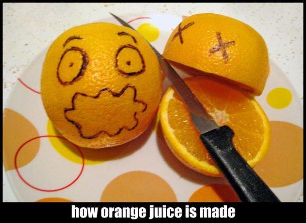 How_Orange_Juice_Is_Made