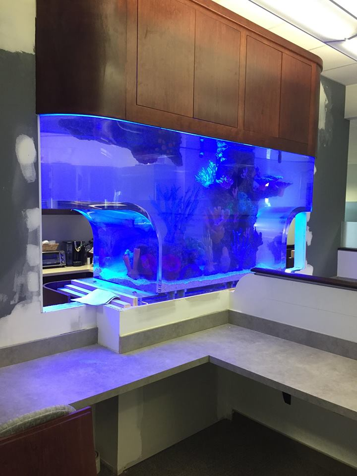 Custom Acrylic Aquarium Manufacturers Titan Aquatic Exhibits