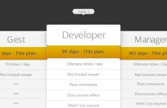 Clean Pricing Table PSD