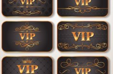 Elegant Golden Border VIP Card Vector 03