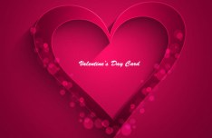 Elegant Valentine's Day Card Template Vector 09