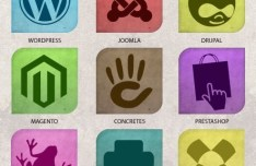 Multi Color CMS Web Icons