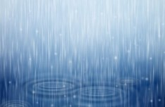 Rain Drops Vector Background
