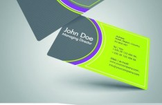Stylish Color Business Cards 04